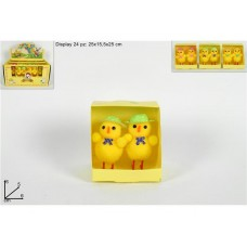 Coppia pulcini scatolina