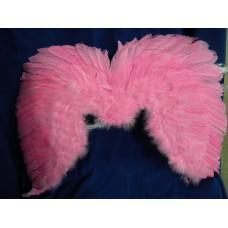 ali grandi di piume rosa