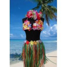 Reggiseno Hawaiiano